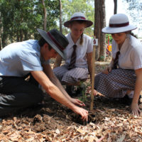 year-12-tree-planting-ceremony-2015-for-web-21