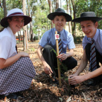 year-12-tree-planting-ceremony-2015-for-web-22
