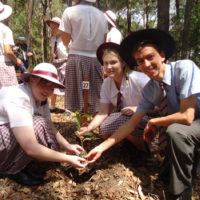 year-12-tree-planting-ceremony-2015-for-web-3