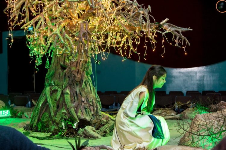 A Midsummer Nights Dream 11 Medium