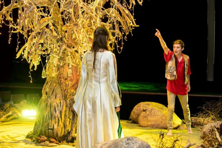 A Midsummer Nights Dream 23 Medium