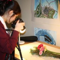 Year-11-Visual-Art-Photography-4