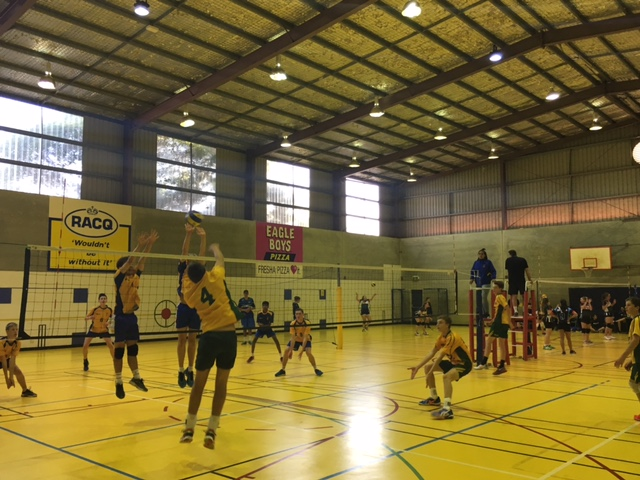 towoomba-volleyball-2.JPG?mtime=20160525