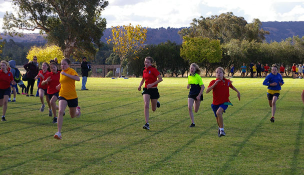 2018 Primary Athletics Carnival 9