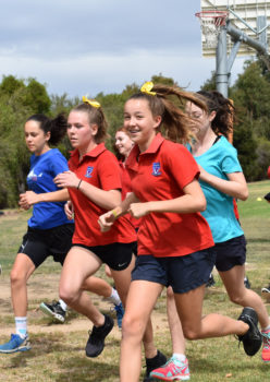 2018 X Country Carnival Banner