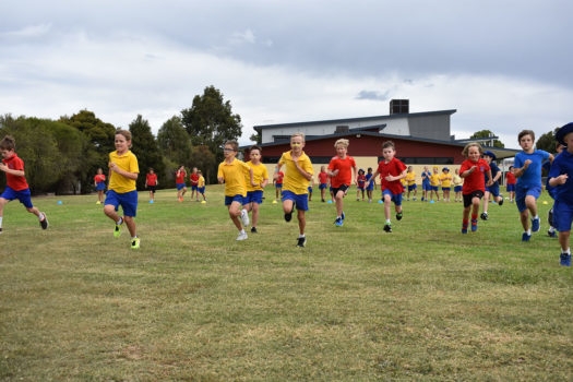 Cross Country Carnival 2018 25