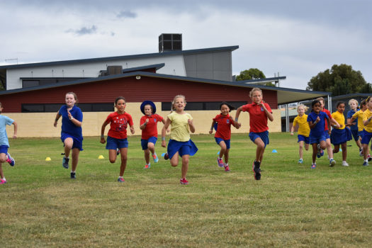 Cross Country Carnival 2018 27