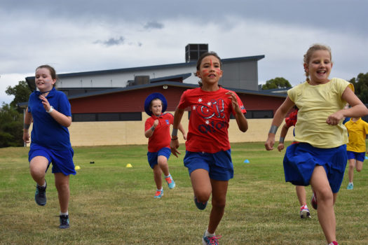 Cross Country Carnival 2018 28