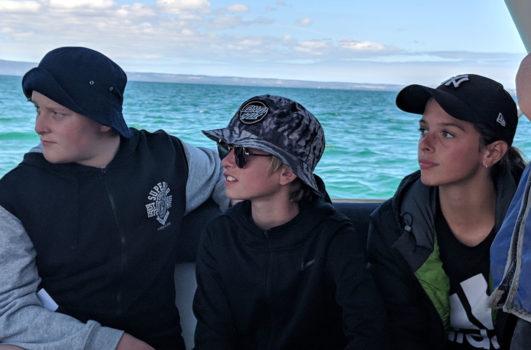 13 Yr 8 Camp Marine Discovery Cruise