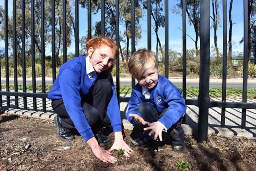 News Nat Tree Day 05
