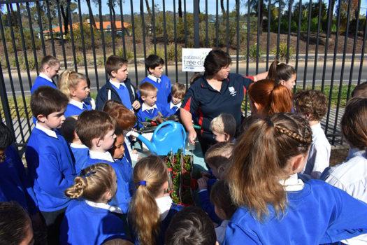 News Nat Tree Day 09