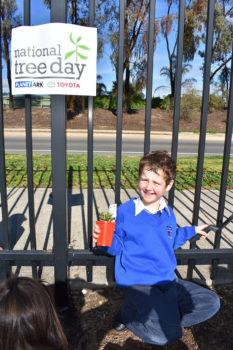 News Nat Tree Day 14