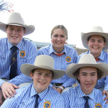 Qcl Ekka Cattle Team1