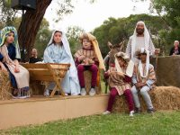 Carols And Nativity 55