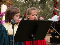 Carols And Nativity 56