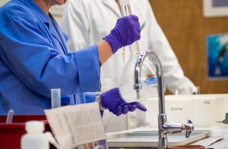 Y4 Science Export 10