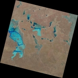 photo lake-gairdner-landsat20150118.jpg