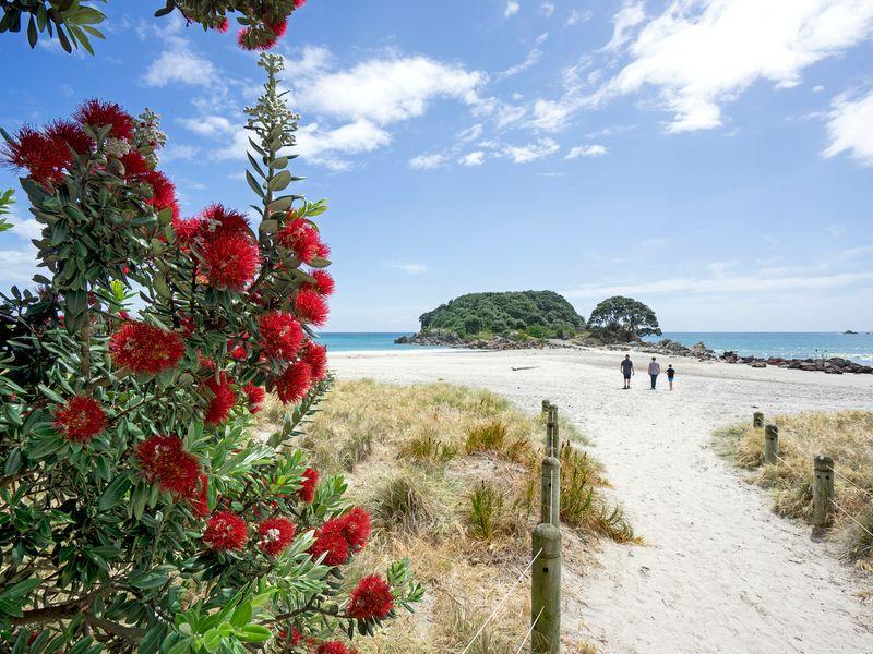New Zealand Summer Solstice