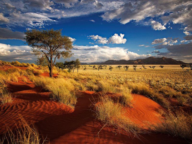Western Africa Journey
