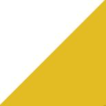 mg3-hatch-yellow-white-module