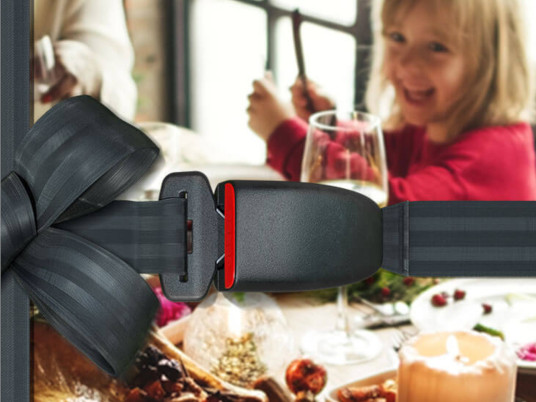 Girl sitting at a dinner table with seatbelt graphic overlay