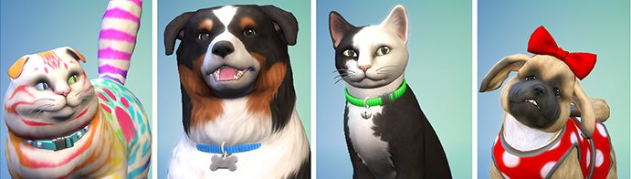 Sims  Cats And Dogs On Walk Forever