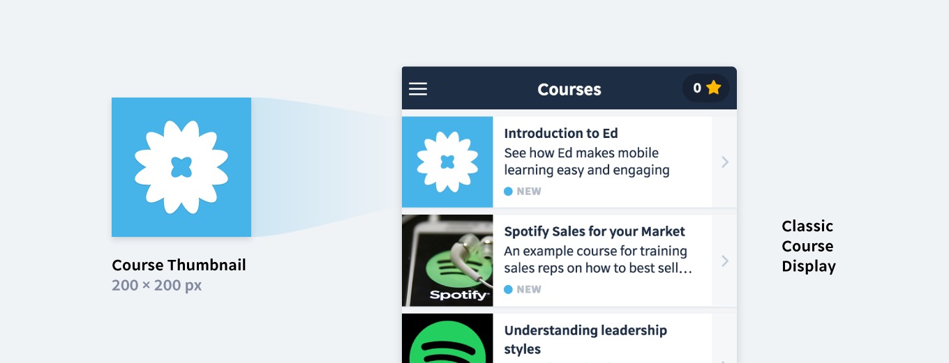 Branding Checklist: How to customise your Ed lessons