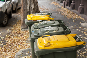 Waste_-_rubbish_collection_0014