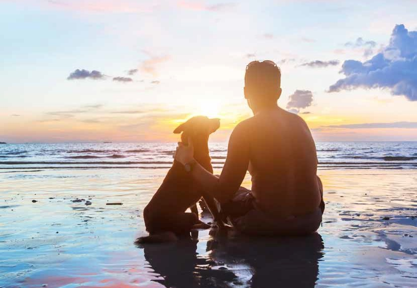 Image of man with dog on beach watching sun set