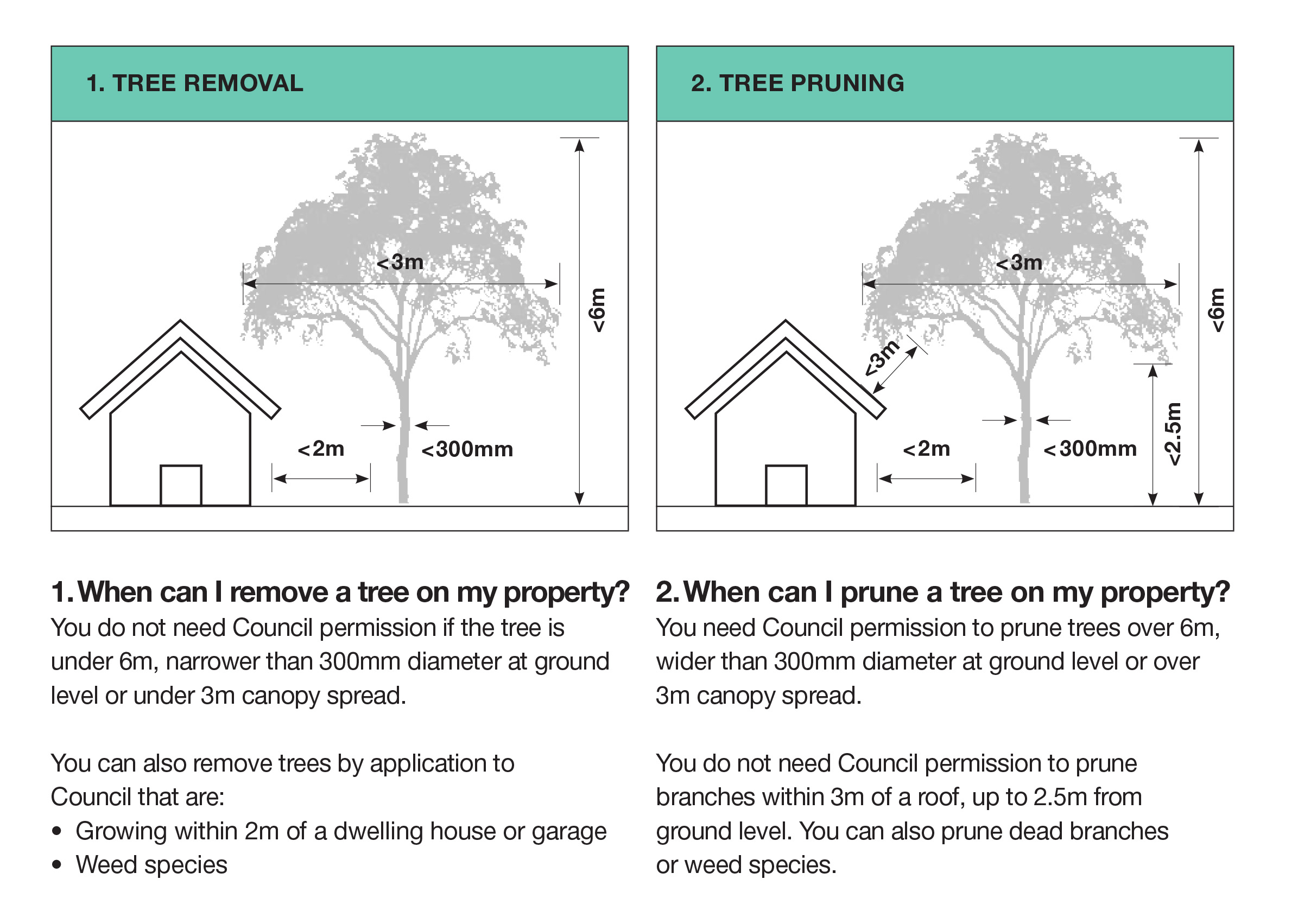 1. When can I remove a tree on my property? You do not need Council permission if the tree is under 6m, narrower than 300mm diameter at ground level or under 3m canopy spread. You can also remove trees by application to Council that are: • Growing within 2m of a dwelling house or garage • Weed species 2. When can I prune a tree on my property? You need Council permission to prune trees over 6m, wider than 300mm diameter at ground level or over 3m canopy spread. You do not need Council permission to prune branches within 3m of a roof, up to 2.5m from ground level. You can also prune dead branches or weed species.