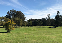 Golf course small