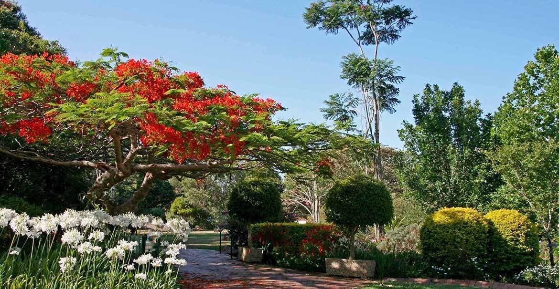 Botanic gardens pic resized 2 %281%29