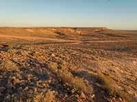 Sturt national park 3084 engage