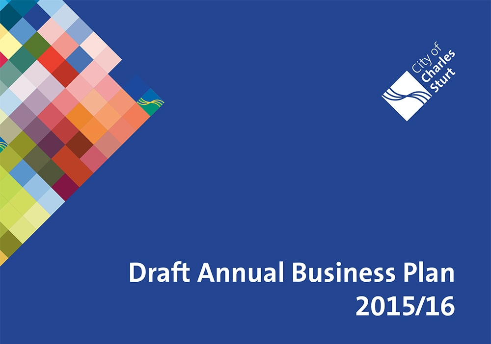 Draft annual business plan 15 16 small