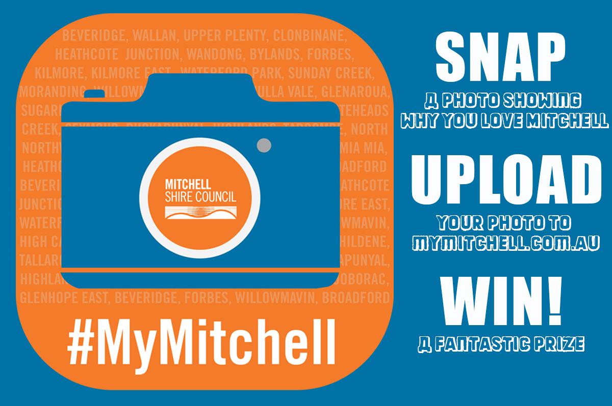 Mymitchell social tile
