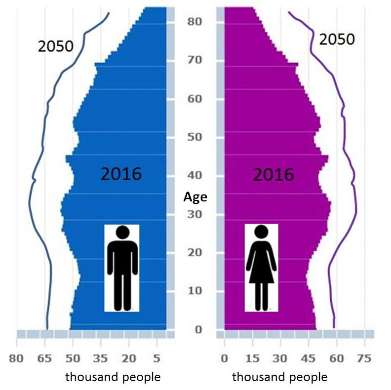 NSW Age Profile (2016 and 2050)
