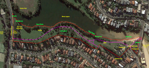 Manly lagoon landscape plan