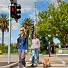 Hys_main_image_-_st_kilda_road_crossing