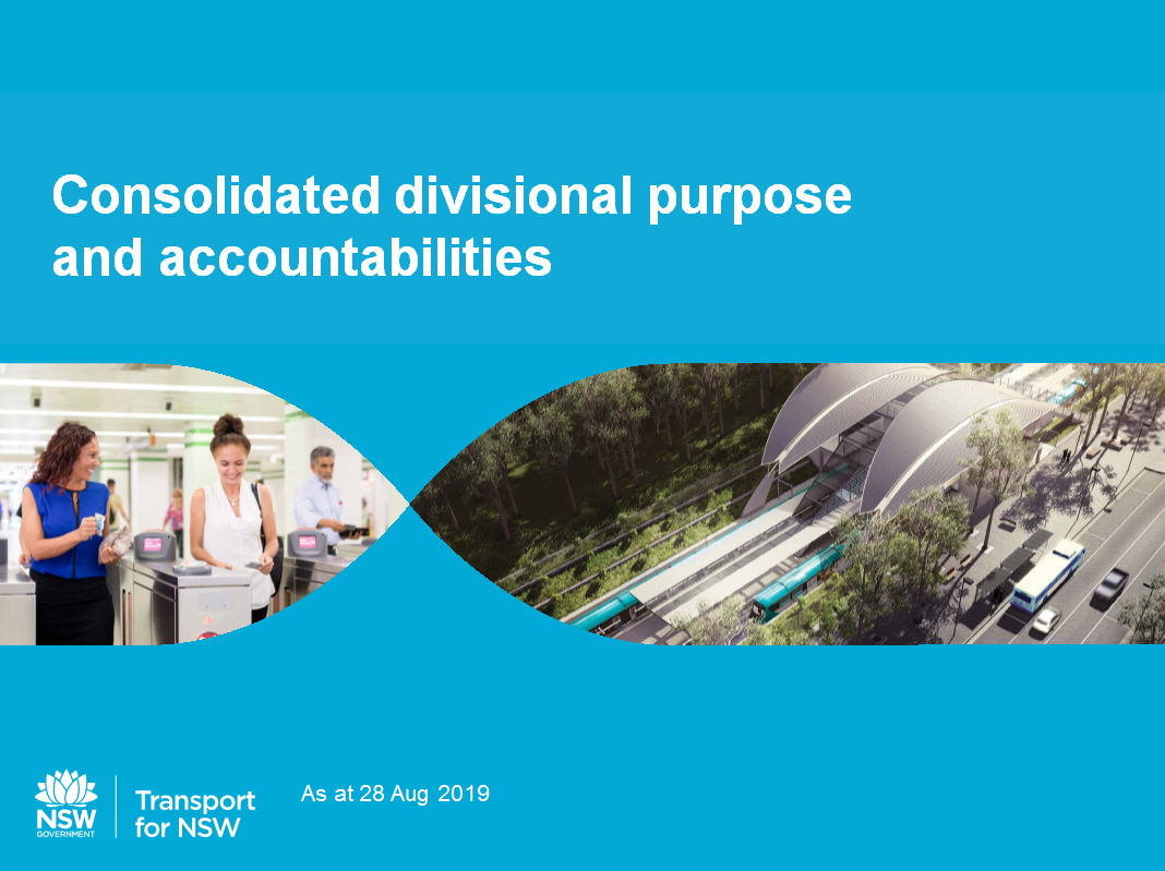 Draft consolidated purpose and accountabilities thumbnail