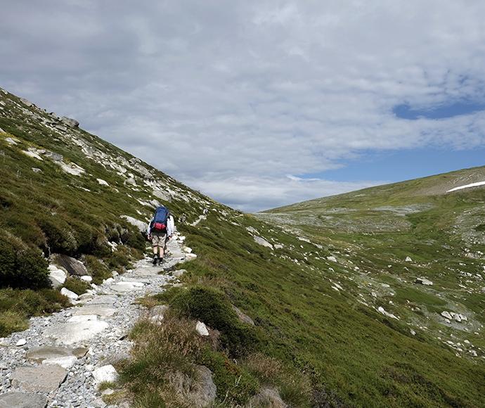Kosciuszko national park main range walk 162907