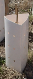 picture of biodegradable tree guard