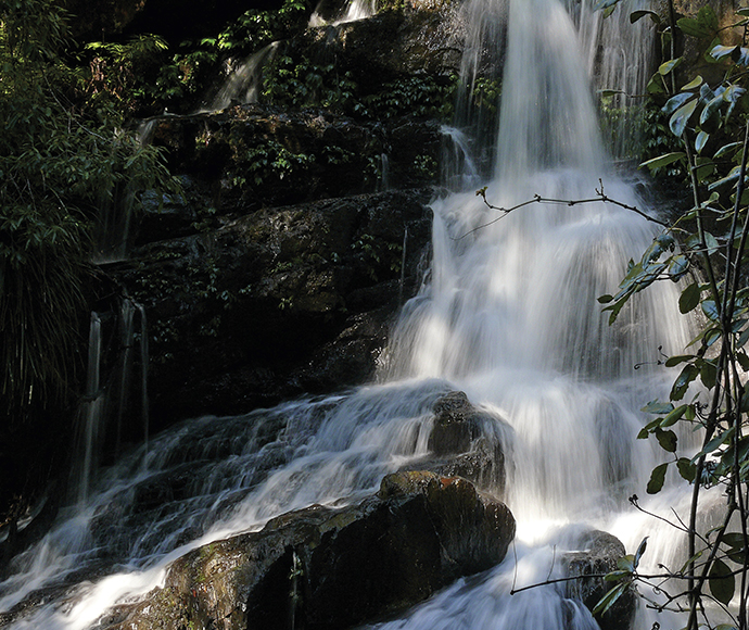 Bindarri national park bangalore falls walking track 161224