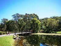 Gchysnewsfeed-parks