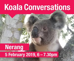 13845 koala conversation mrec nerang
