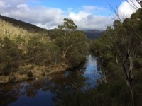 Photo lower thredbo valley track