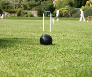 Croquet game picture id179260945