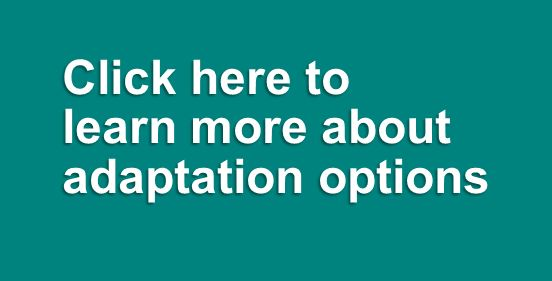 Learn more about adaptation options