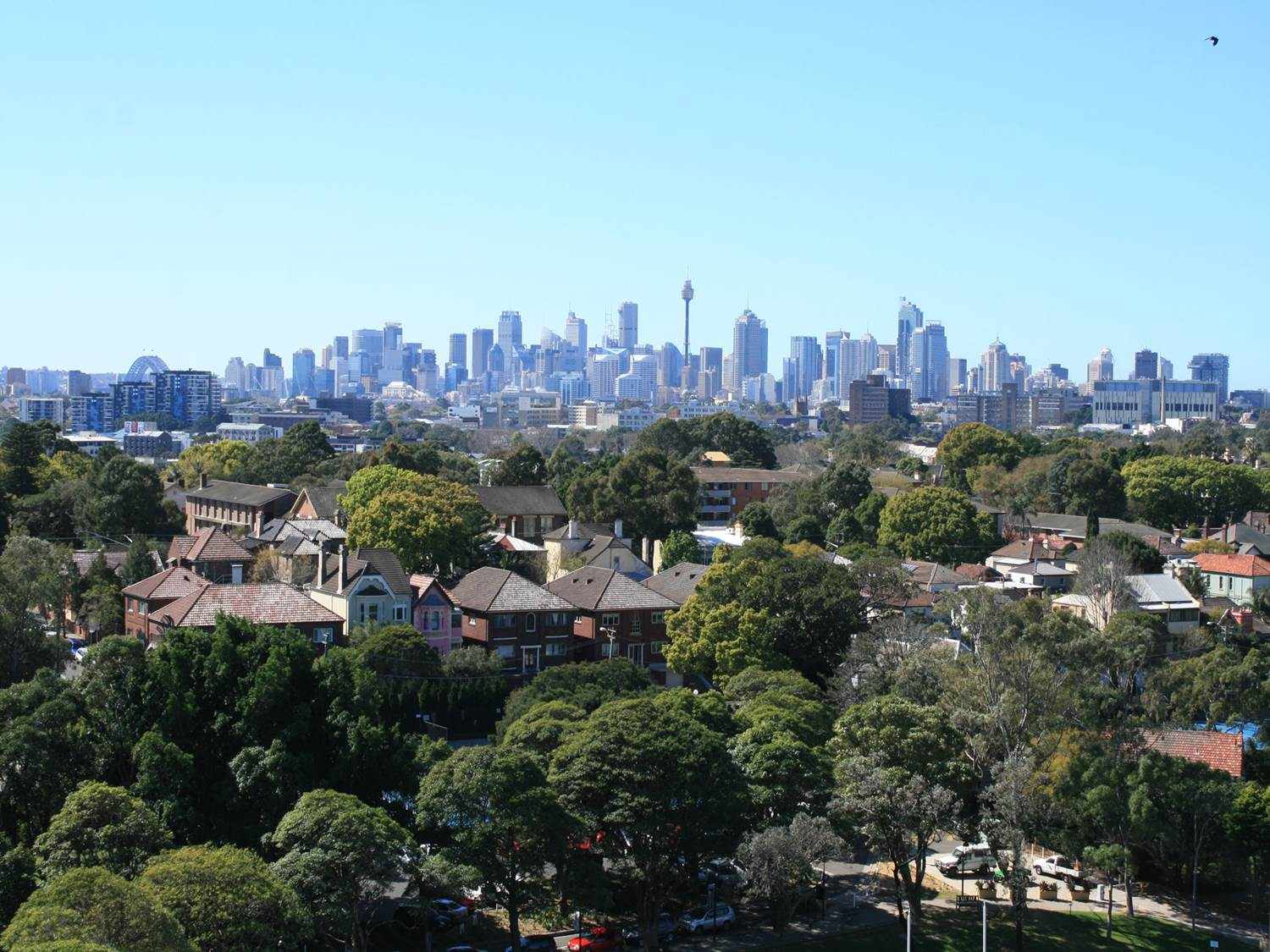 View over neighbourhood with many trees