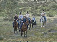Murrumbidgee valley national park horse riding