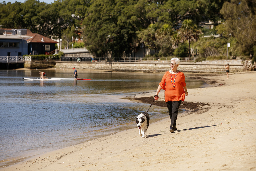 Rose Bay Park Seawall Design